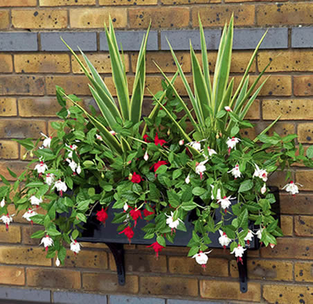 Window baskets
