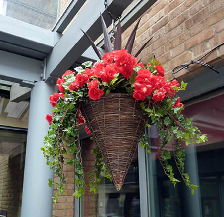 best hanging-baskets-