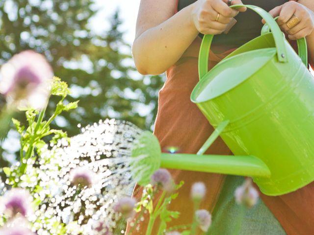 Home maintenance tips for summer