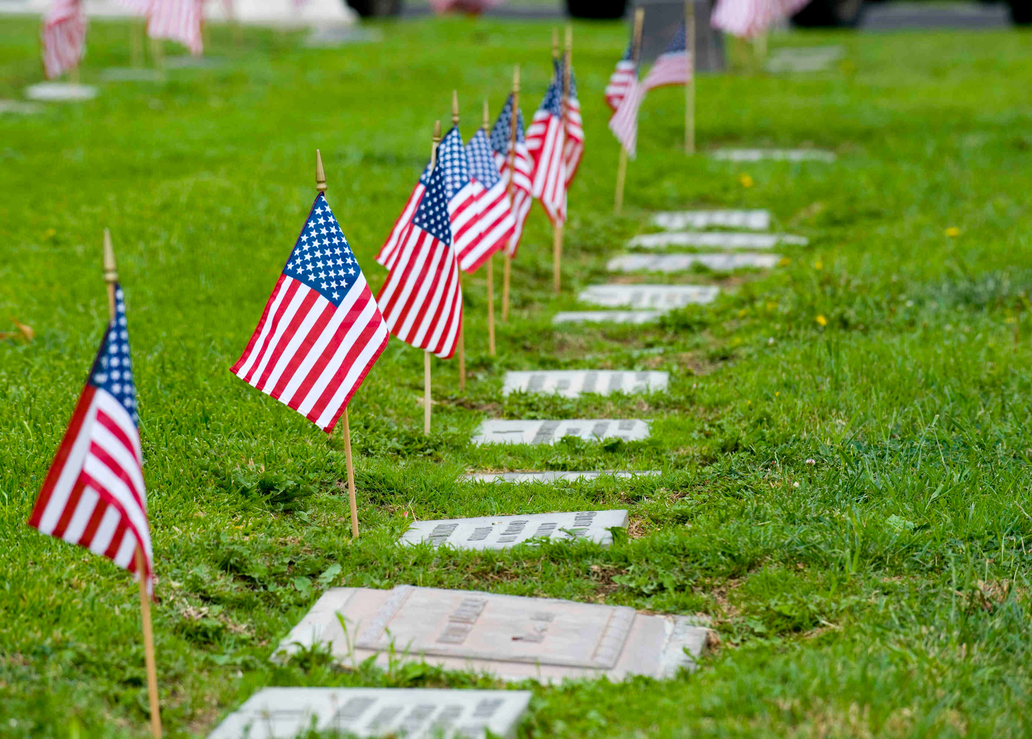 memorial day grave flowers