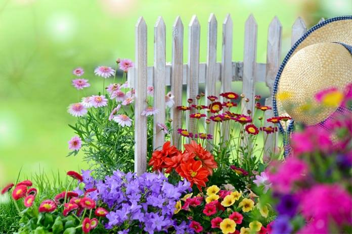 Beautiful-Flower-Garden