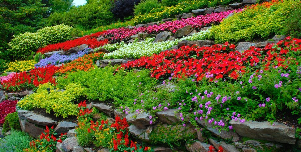 beautiful flower garden ideas