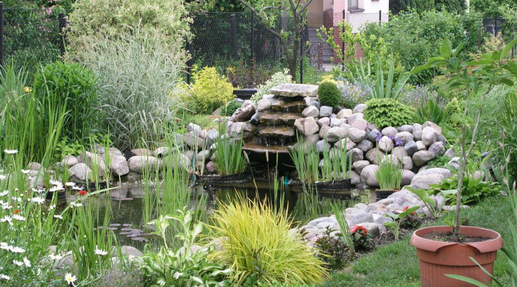 garden-pond-designs