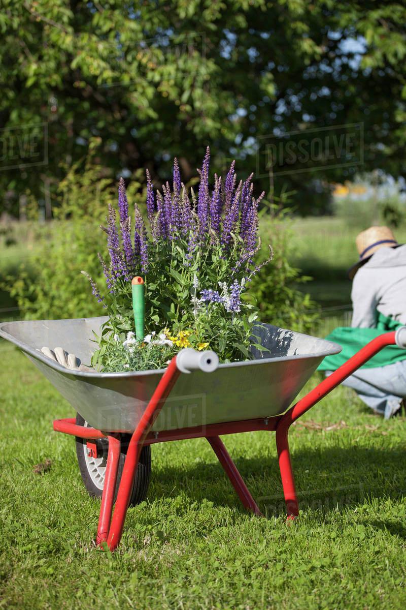 garden tools uk