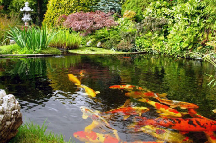 large garden water features