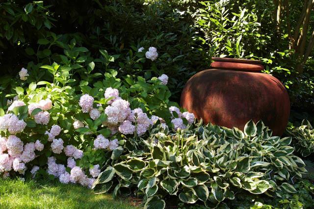 partial shade garden plans