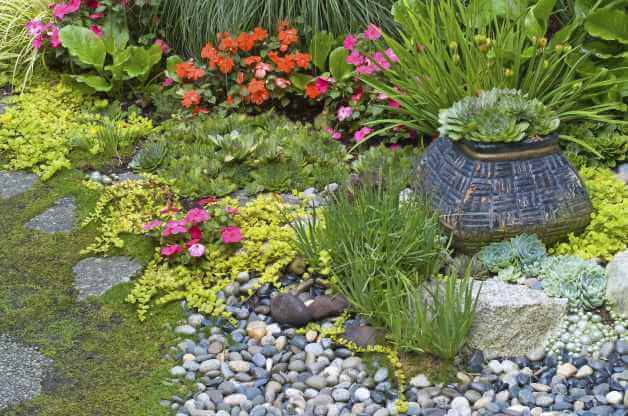 rock garden torquay