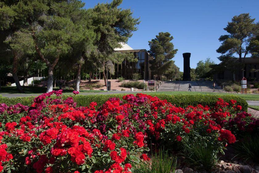 rose_garden-