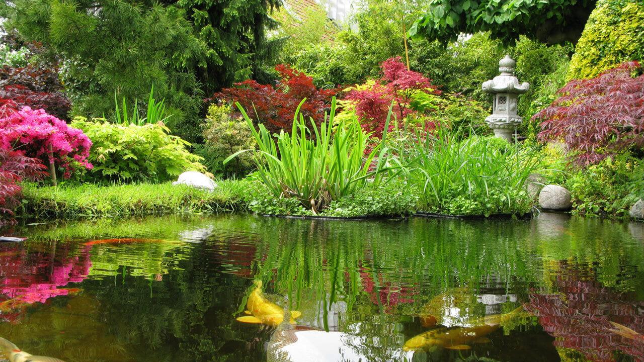 water gardens harlow